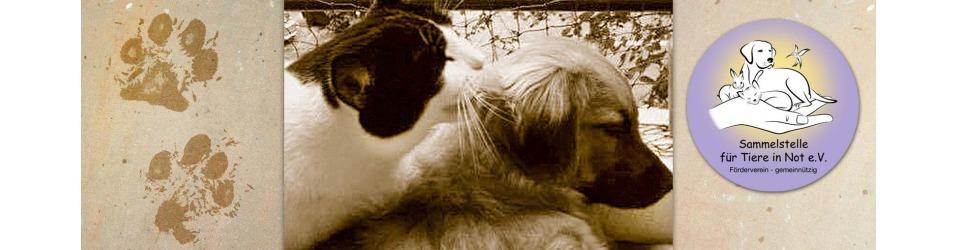 Sammelstelle für Tiere in Not e.V.