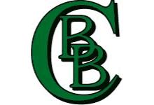Abteilung Baseball des SV Braunsbedra e.V.