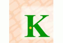 KOM-IN-Netzwerk e.V.