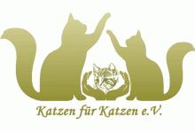 Katzen für Katzen e.V.