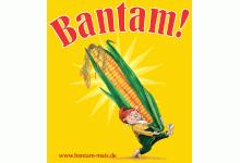 Aktion Bantam