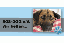 SOS-DOG e.V.
