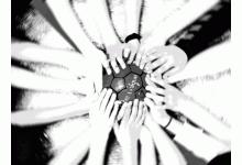 Förderverein Jugendhandball in Wilhelmshaven e.V.