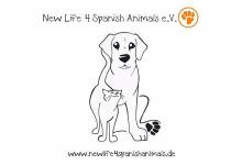 New Life 4 Spanish Animals e.V.