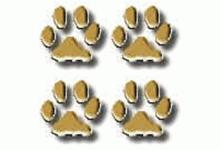 Tierschutzverein Vier Pfötchen-Viersen e.V.