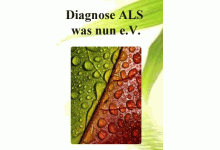 Diagnose ALS was nun e.V.