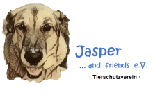 Jasper and friends e.V.