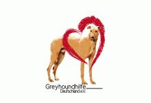 Greyhoundhilfe Deutschland e.V.