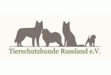 Tierschutzhunde Russland e.V. - Neue Wege ins Glück