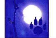 Tierhilfe Bluemoon & Pfötchenfreunde