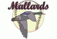 Baseballverein Erding Mallards e.V.